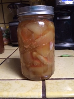 H20 Melon Pickles